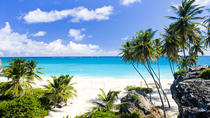 Barbados Coastal Beach Sightseeing Tour, Barbados, null