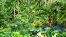 Barbados Half-Day Garden Tour, Barbados, null