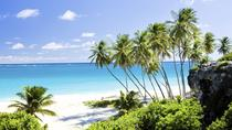 Barbados Private Custom Island Tour, Barbados