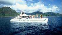Oahu Catamaran Cruise: Wildlife, Snorkeling and Hawaiian Buffet, Oahu