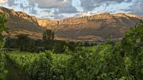 4x4 Route to discover Basque traditional gastronomy & Txakoli wine, from Bilbao, Bilbao, 4WD, ATV &...