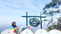 Day Excursion to Lipton Seat & Dambatenne Tea Factory from Ella, Nuwara Eliya, Day Trips