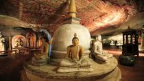 Day Excursions to Sigiriya & Dambulla from Negombo, Negombo, Day Trips