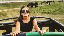 Day Excursions to Udawalawe National Park from Ella, Colombo, Attraction Tickets