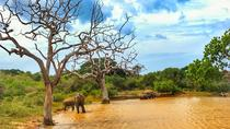 Day Excursions to Yala National Park Form Ella, Colombo, Attraction Tickets