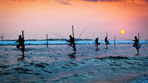 Galle Day Tour with Stilt Fishing Experience from Negombo, Negombo, Day Trips