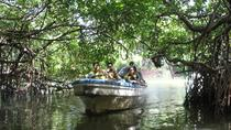 Shore Excursion Mangrove Boat Tour To Negombo From Colombo Port, Negombo, Ports of Call Tours