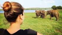 Udawalawe National Park Safari From Bentota, Bentota, Attraction Tickets