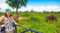 Udawalawe National Park Safari, Yala National Park, Attraction Tickets
