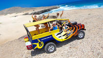 Beach Escape and Cave Safari in Aruba, Aruba, Full-day Tours