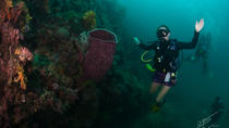 Local Diving from Phi Phi Island, Ko Phi Phi Don, Other Water Sports