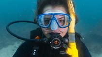 PADI Discover Scuba Diving from Phi Phi Island, Phuket, Scuba Diving