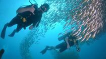 PADI Open Water Course on Phi Phi Island, Phuket, Scuba Diving