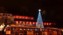 Holiday Lights Tour, Oahu, Christmas