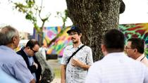 Official Street Art Walking Tour of The Wynwood Walls, Miami, Literary, Art & Music Tours