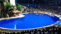 See Pandas and Aquarium at Beijing Zoo plus Hutong Rickshaw and Drum Tower Tour, Beijing,...
