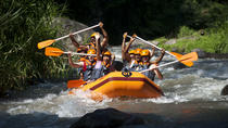 Ayung Rafting and Combination Ubud Tour Packages, Ubud, 4WD, ATV & Off-Road Tours