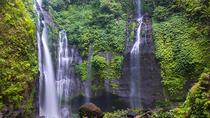 Bali Sekumpul Waterfall Trekking, Ubud, Full-day Tours