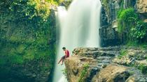 Private Ubud Tour and Tegenungan waterfall, Ubud, Private Day Trips