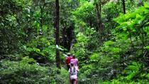 Ubud Full-Day Tour And Countryside Trekking, Ubud, Full-day Tours