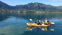 Kaneohe Bay Kayak and Snorkel Tour to Coconut Island, Oahu, Dolphin & Whale Watching
