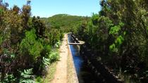 Levada do Alecrim, Funchal, Private Sightseeing Tours