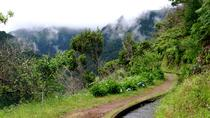 Levada Ribeira Janela, Funchal, Private Sightseeing Tours