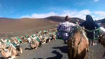 Lanzarote Camel Safari Tour at the Timanfaya National Park , Lanzarote, Nature & Wildlife