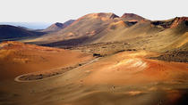Lanzarote Small Group Timanfaya Volcan Experience , Lanzarote, Private Sightseeing Tours