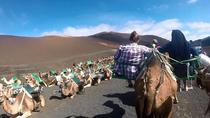 Tour de Camel Safari en El Parque de Timanfaya Volcan, Lanzarote, Nature & Wildlife