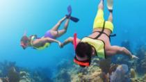 Key Largo Snorkeling Adventure, Miami, 4WD, ATV & Off-Road Tours