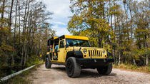 Privétour: Everglades-sightseeing in Big Cypress National Park, Miami