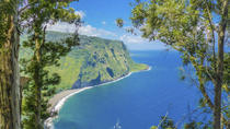 Private Tour: Hawaii Island Adventure, Big Island of Hawaii, Ziplines