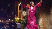 Barcelona Evening Flamenco Show and Gourmet Dinner with Premium Small Group, Barcelona, Flamenco