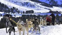 Mushing & Mountain Hut overnight with breakfast & dinner in Andorra, Andorra, Overnight Tours