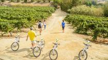 Private Vineyards & Barcelona Beaches by eBike, Barcelona, Bike & Mountain Bike Tours