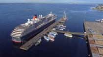Private Transfer Manaus Cruise Port to MAO Eduardo Gomes International Airport, Manaus, Private...