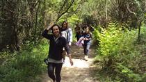 hiking on the Way of St James to San Pedro, San Sebastian, Hiking & Camping