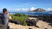 Oahu Island Photography Tour, Oahu, Full-day Tours