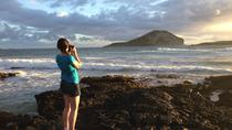 Sunrise Photo Tour on Oahu, Oahu, Dolphin & Whale Watching