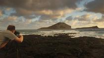 Sunrise Plus Island Tour, Oahu, Half-day Tours