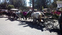 Private City Tour By Carriage, Marrakech, Horse Carriage Rides