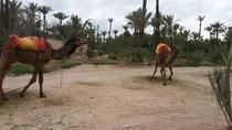 Quad Biking Adventure with Camel Ride, Marrakech, 4WD, ATV & Off-Road Tours