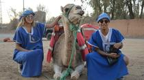Quad Biking and Camel Ride with Lunch in PalmGrove Of Marrakech, Marrakech, 4WD, ATV & Off-Road ...