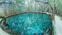 Cenote Natural Reserve with Beach Break Excursion, Merida, Ports of Call Tours