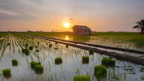 2,5 hour Sunset Motorbike Tours, Hoi An, Motorcycle Tours