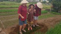 Experience The REAL LOCAL LIFE of HOI AN people Depature from HOI AN or DA NANG, Hoi An, 4WD, ATV & ...
