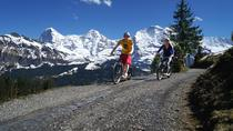 Excursion en trottinette vers l'Oberland bernois depuis Interlaken, Interlaken, Bike & Mountain Bike Tours
