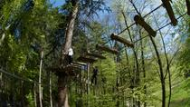 High Ropes Adventure Park Admission in Interlaken, Interlaken, Ziplines