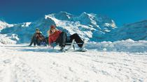 Snowshoe and Sled Adventure in the Swiss Alps from Interlaken, Interlaken, Ski & Snow